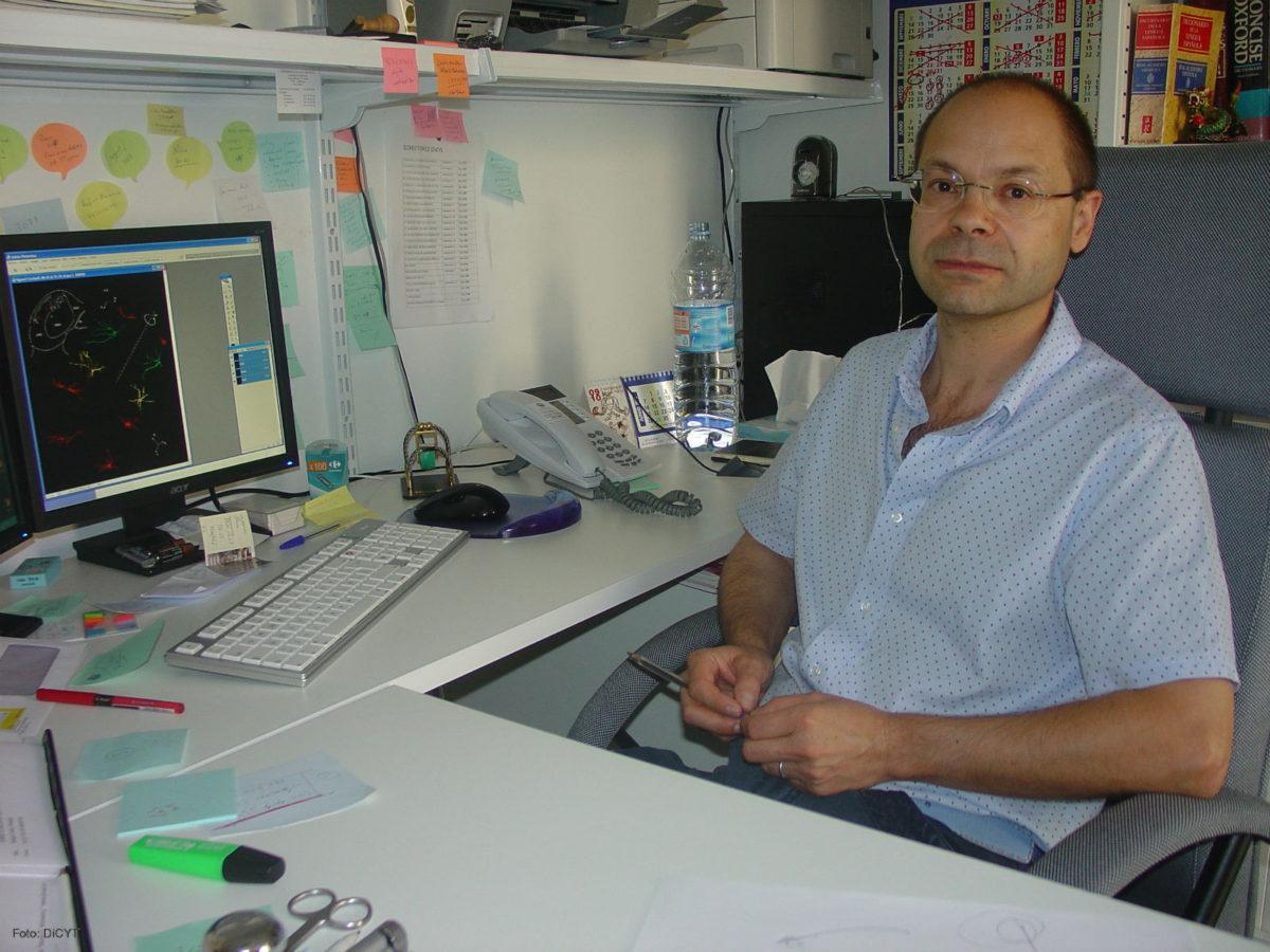 Manuel Sanchez Malmierca program director PhD in Neurosciences